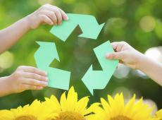 Freya Perdaens recyclage